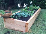 Established garden bed