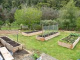 Established garden beds